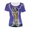 Funny Galaxy Cat T Shirt And Other Designs