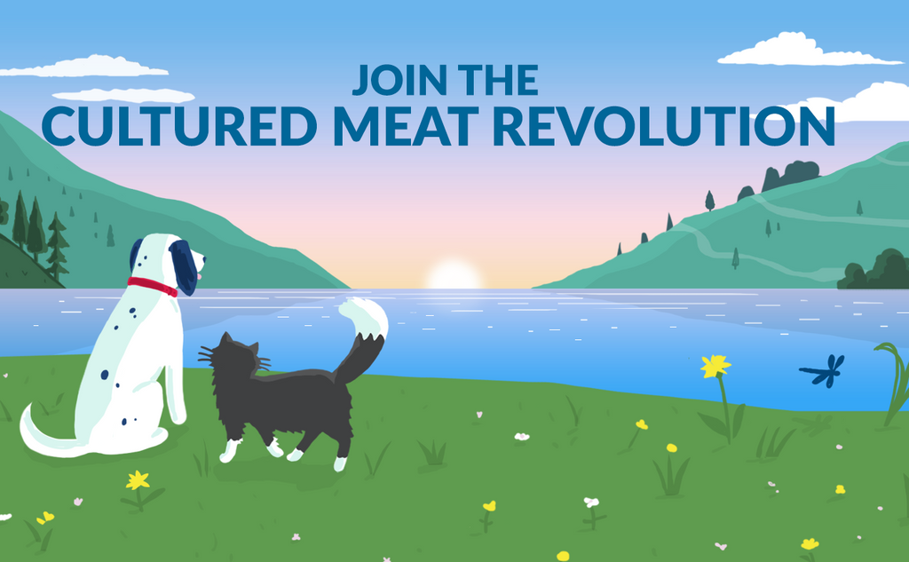 clean meat pet food, cultured meat pet food, cultivated meat pet food