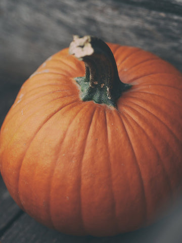 Health Benefits Of Pumpkin For Dogs And Cats