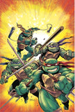 Teenage Mutant Ninja Turtles #75 Kevin Eastman/Joe Sinnott Exclusive Color Virgin Variant