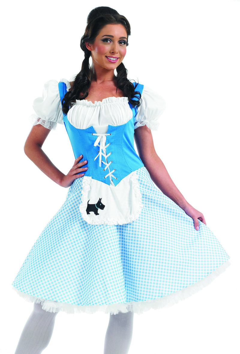 Wizard Of Oz Dorothy fancy dress outfit
