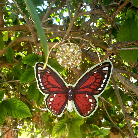 The Butterfly That Roped The Sun Collection #2