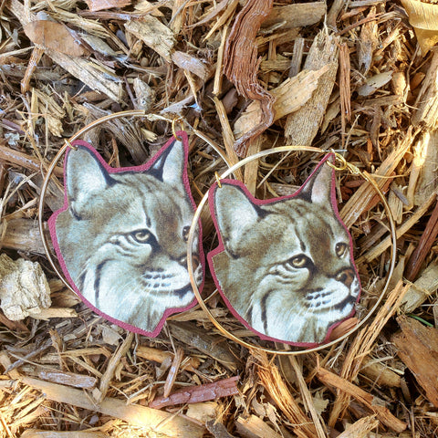 Bob Cat Hoop Earrings