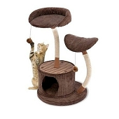 Two Level Lounge Activity Center - Retreat Hide Away