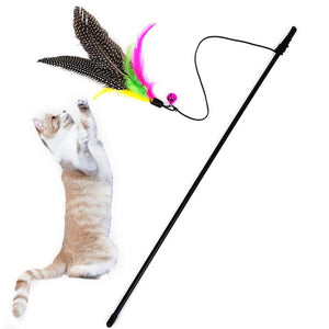 Kitten / Cat Teaser Interactive Toy - Rod with Bell and Feather - More Fun!