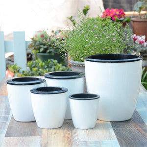 New Automatic Water-Absorbing Plastic Flower Pots