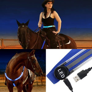 MOYLOR USB Rechargeable LED Breastplate Horse Harness - Night Visible