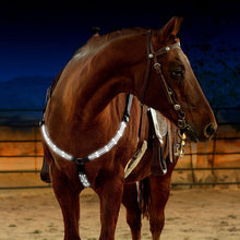 MOYLOR  Horse Breastplate Dual LED Horse Harness - Nylon, Night Visible