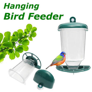 Clear Window  Hanging Bird Feeder