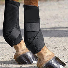 Newest Arrival - Protective Horse Leggings