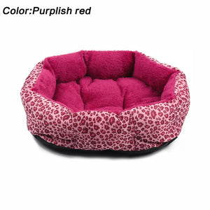 Colorful Leopard Print Pet Bed - Sizes M & L