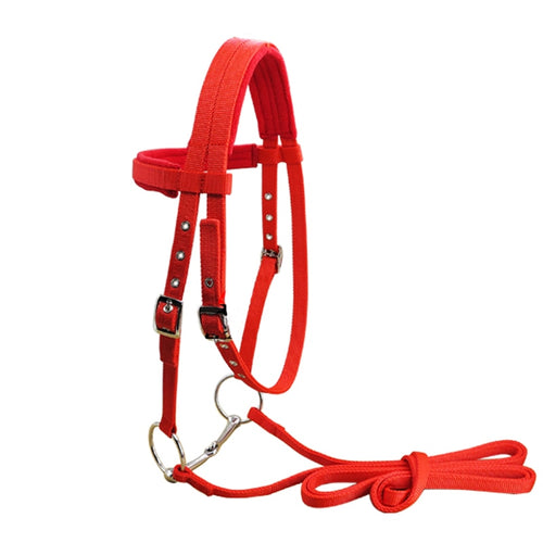 Adjustable Horse Halter, Bridle With Bit and Rein Belt