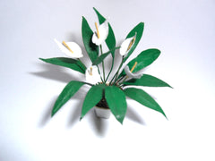 Miniature Flower Kit PEACE LILY Dolls House plant 12th scale