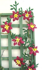 CLEMATIS 'Niobe' Dolls House Flowers Kit 12th