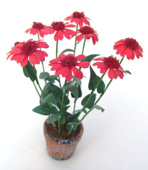 RED ECHINACEA flower kit 12th scale