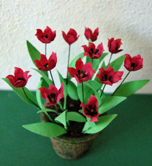 FLOWER KIT RED TULIPS 'LILY-FLOWERED' 12th scale