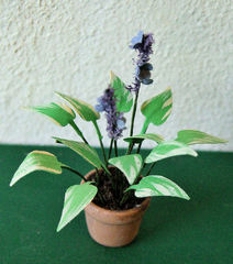 FLOWER KIT SMALL HOSTA 12th scale