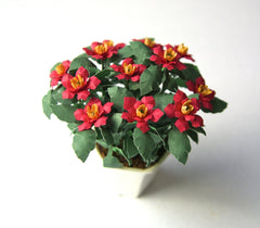 POINSETTIA flower kit 12th scale Miniature flower
