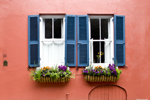 Window Boxes Variety Pack