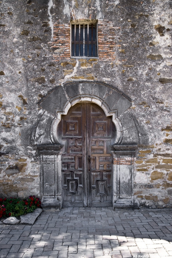 Mission Espada Door