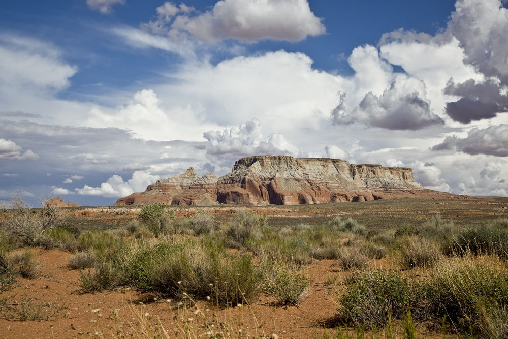 Navajo Nation: The Road Out