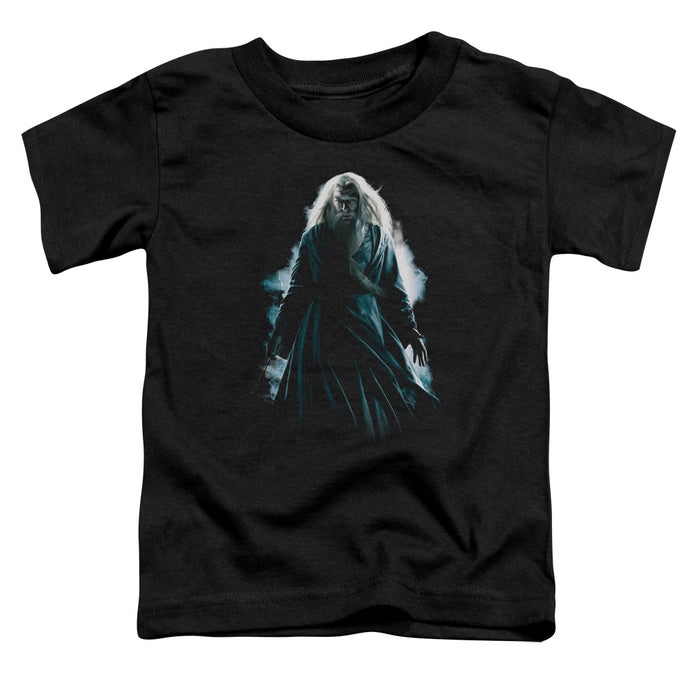 Harry Potter - Dumbledore Burst Short Sleeve Toddler Tee - Special Holiday Gift