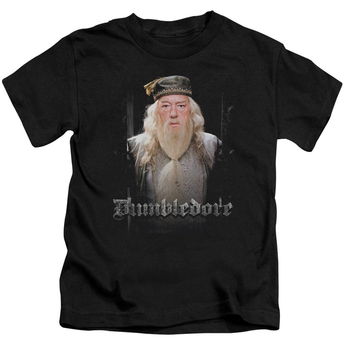 Harry Potter - Dumble Doors Short Sleeve Juvenile 18/1 Tee - Special Holiday Gift