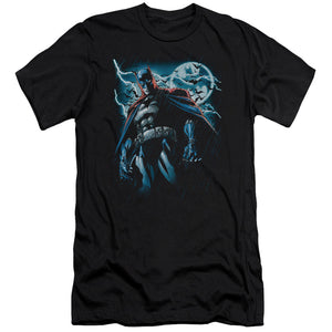 Batman - Stormy Knight Short Sleeve Adult 30/1 Tee - Special Holiday Gift