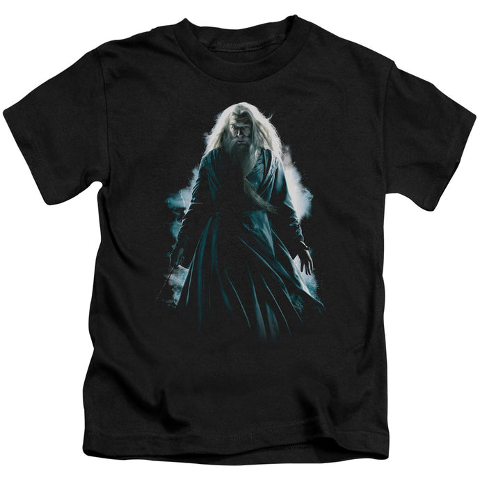 Harry Potter - Dumbledore Burst Short Sleeve Juvenile 18/1 Tee - Special Holiday Gift