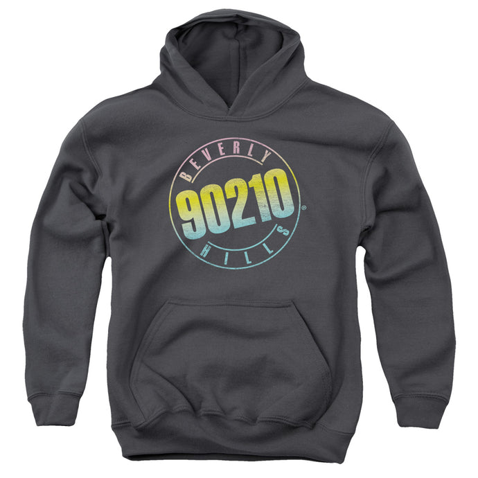 90210 - Color Blend Logo Youth Pull Over Hoodie - Special Holiday Gift