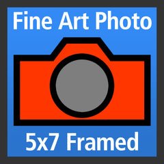 Fine Art Photo - 5 x 7 - Framed