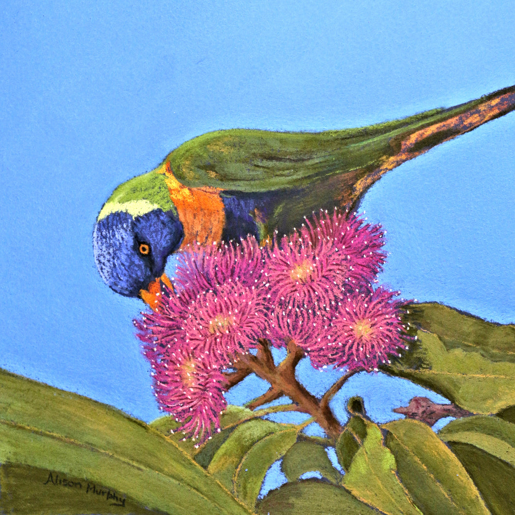 Greeting Card - Printed in Australia-Bird Art