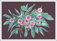 Greeting Card - Australian wildflower Art