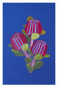 Card - Scarlett Banksia 148 x 105mm - white border 5mm. Each card & envelope encased in crystal clear cello pack.