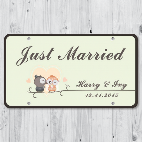 Owl Lover - Just Married Personalized Car Plate