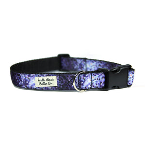 PURPLE OMBRE - Dog Collar/Leash