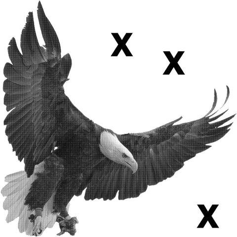 Bald eagle with open wigns in mid flight - High Detail Airbrush stencil HD stencils