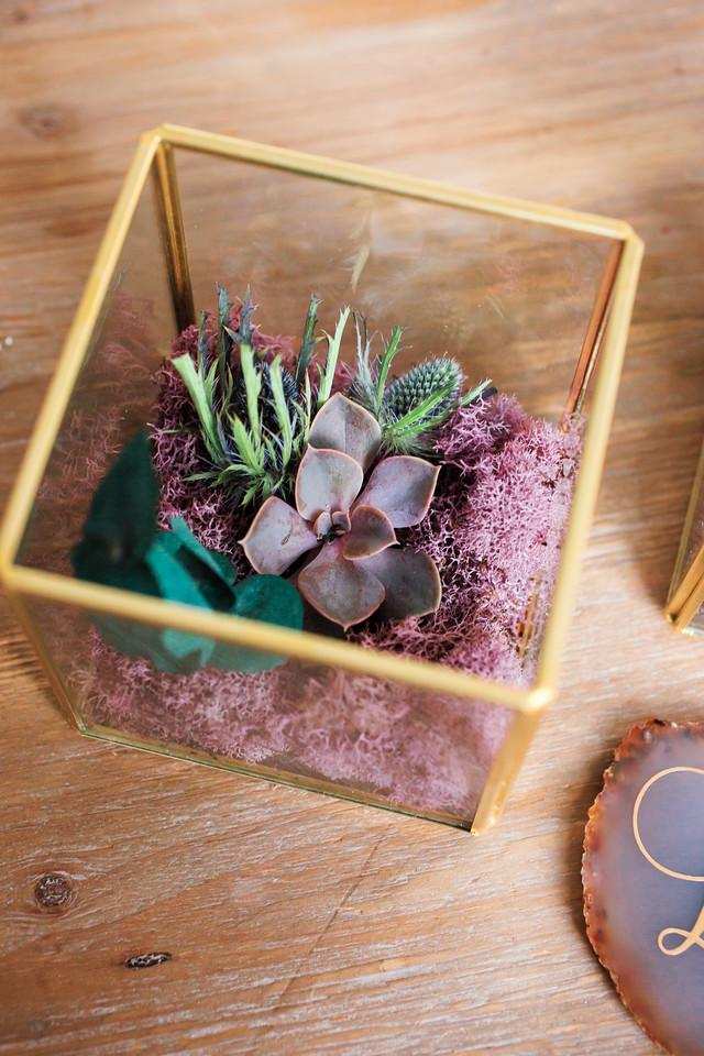 Accent Centerpiece - Square Terrarium