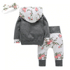 Hoodie + Pants Outfit - Bitsy Bug Boutique
