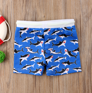 Multi Pattern Swim Trunks