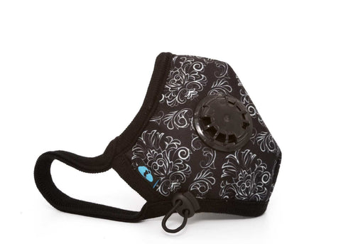 Cambridge Duke Pro Anti Pollution Mask - QMS Surgicals