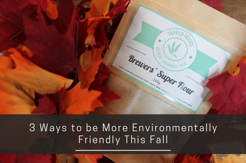 3 Ways to be More Environmentally Friendly This Fall