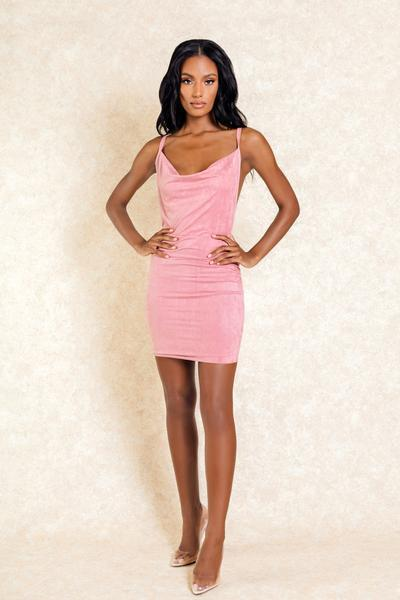 Lily Blush Mini Backless Scoop Neck Dress
