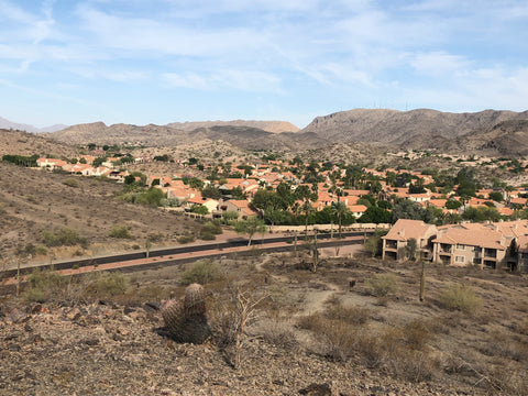 Another Ahwatukee neighborhood nestled between the foothills.