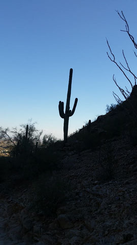 Evening hike on Telegraph Pass, Phoenix, AZ