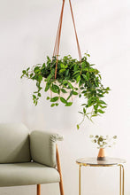 Load image into Gallery viewer, Modern Ceramic Hanging Planter