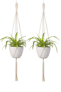 Indoor Wall Hanging Planter Basket