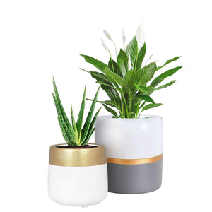 Ceramic Planter Pots Indoor with Drainage Hole 2 pcs