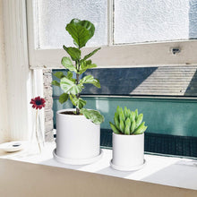 Load image into Gallery viewer, Ceramic Plant Pots Indoor Modern Planters with Drainage Hole and Tray Matte White