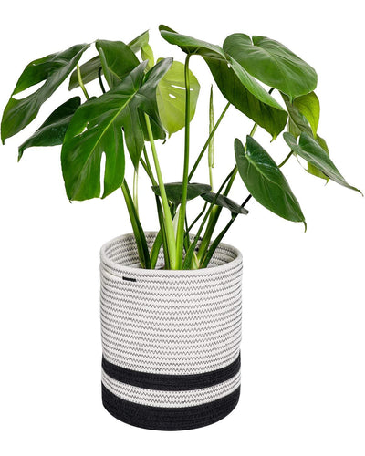 Cotton Rope Plant Basket Black and White Stripe
